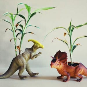 DIY dinosaur planter