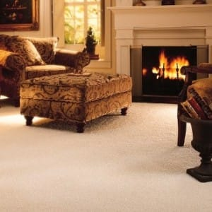 Flooring For Pets Archives Discount Flooring Depot Blogdiscount Flooring Depot Blog