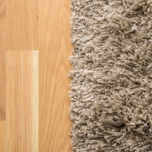 Carpet vs Hardwood - who wins?