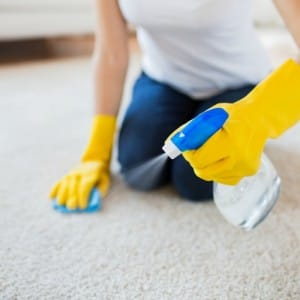 Image of Spray carpet cleaning