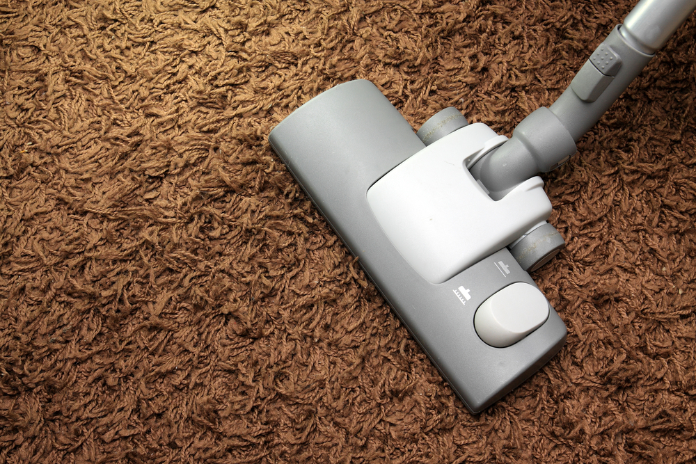how to cleam coir carpet and make it smell better
