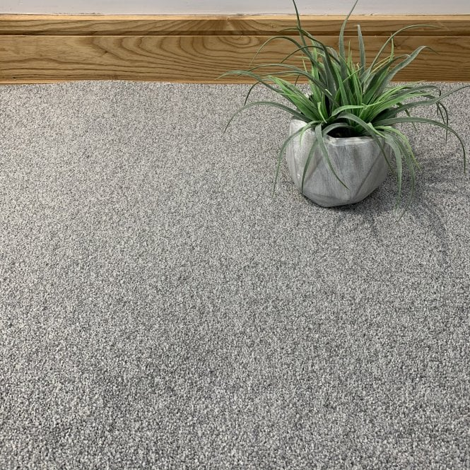Bristol Saxony 74 - Light Grey Carpet - High Pile