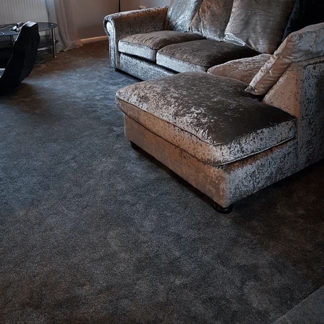 Deluxe Saxony 76 - Dark Grey Carpet - Medium Pile Height / Medium Density