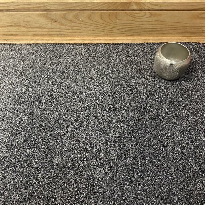 Essential 77 - Dark Grey Carpet - Short Pile Height / Light Density