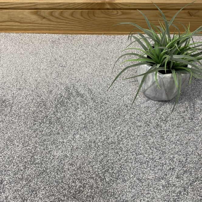 Exquisite 74 - Light Grey Carpet - Long Pile Height / Heavy Density