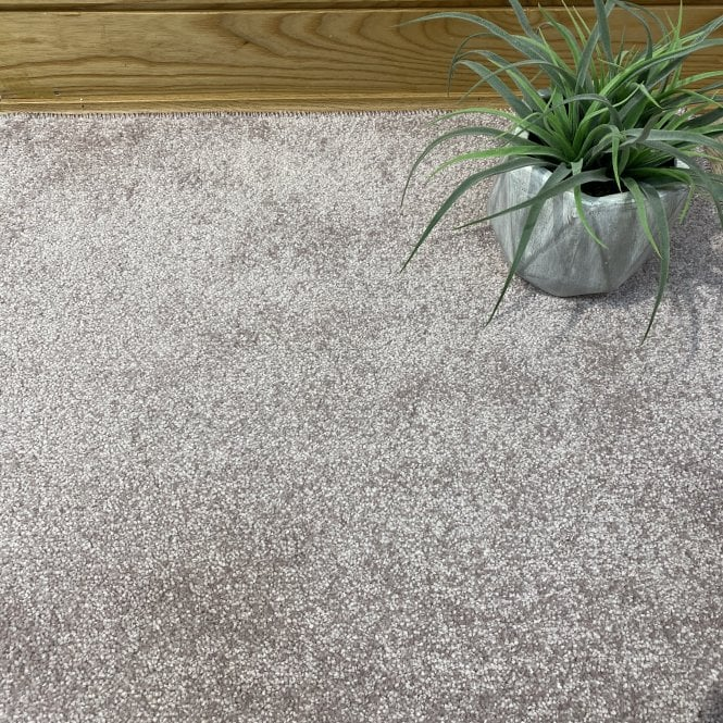 Soft Touch 140 - Light Pink Carpet - Medium Pile Height / Medium Density