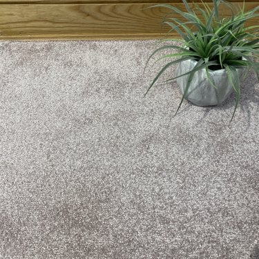 Soft Touch 140 - Light Pink Carpet - Medium Pile Height / Medium Density
