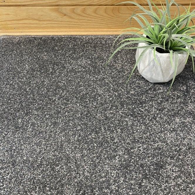 Soft Touch 820 - Dark Grey Carpet - Medium Pile Height / Medium Density