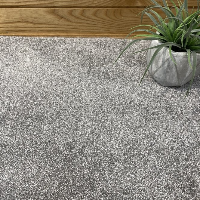 Super Saxony 860 - Mid Grey Carpet - Long Pile Height / Heavy Density
